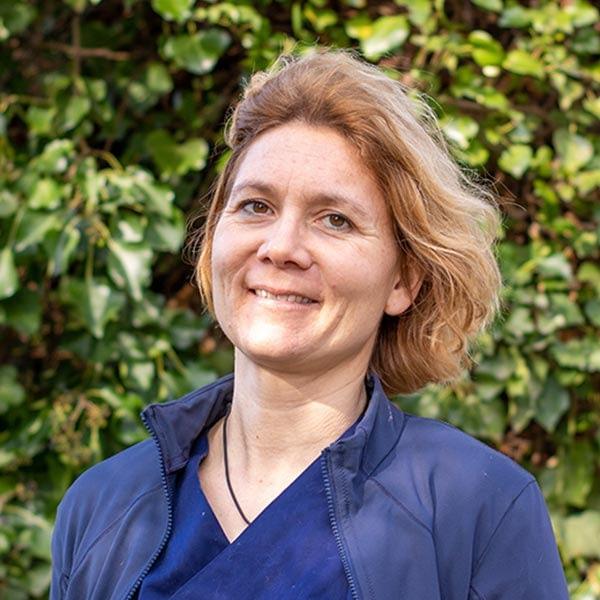 Dr. Judith Döhmen-Steible