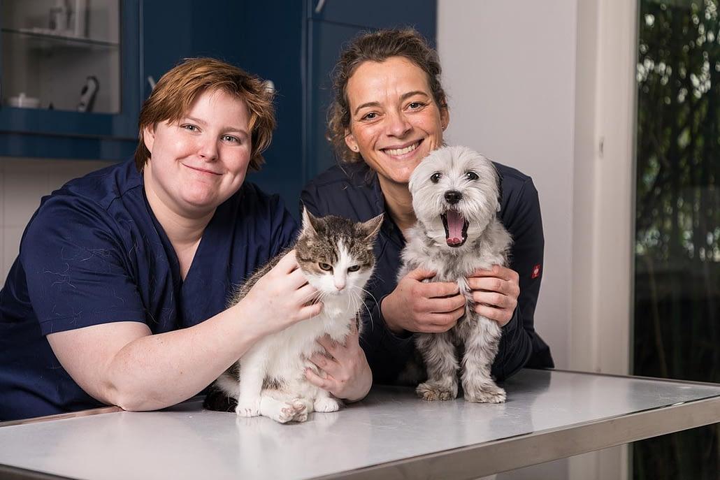 Ärztin, TMFA mit Katze und Hund am Behandlungstisch